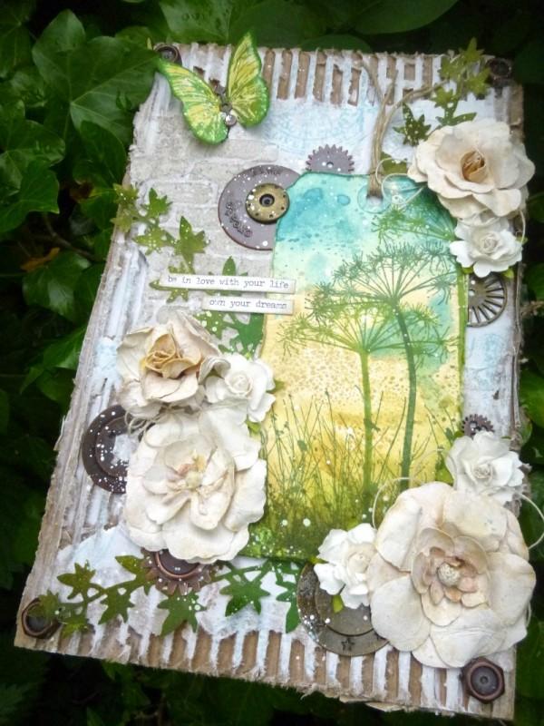 SSS summer garden