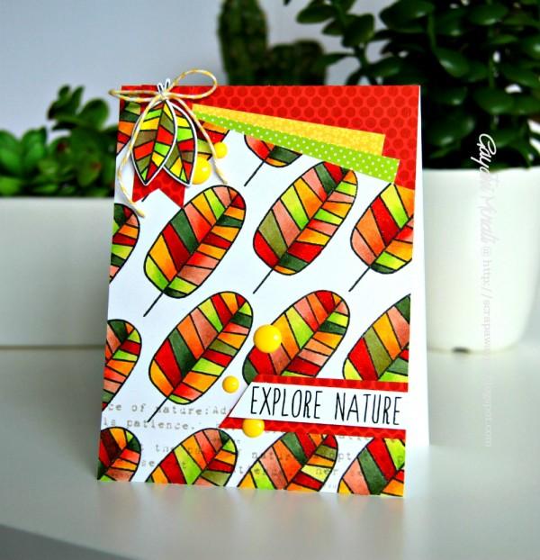 Explore Nature card smaller