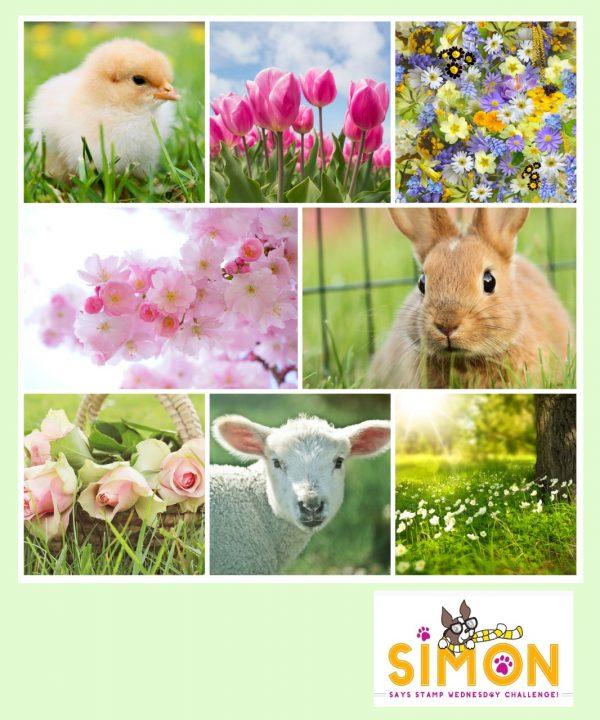 https://www.simonsaysstampblog.com/wednesdaychallenge/simon-says-spring-mood-board/