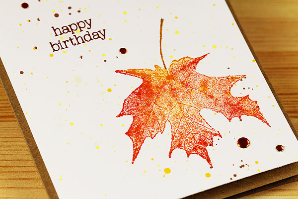 bday-leaf-closeup