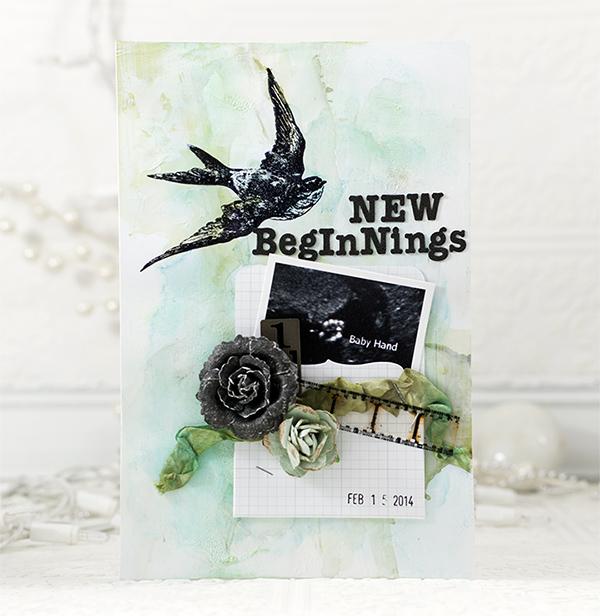 Shari Carroll New Beginnings