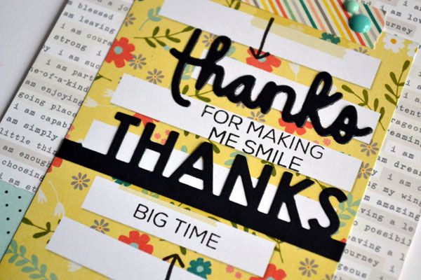 SSS_ThanksBigTime_Close_teri