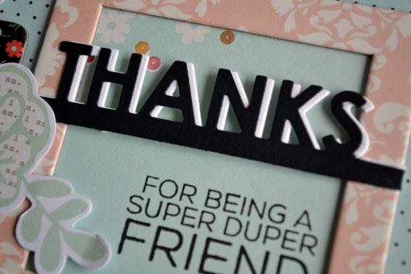 SSS_ThanksSuperDuper_close_teri