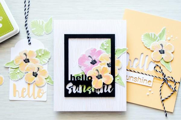 yana-smakula-2015-SSS-Hero-Arts-You-Hello-Sunshine-2