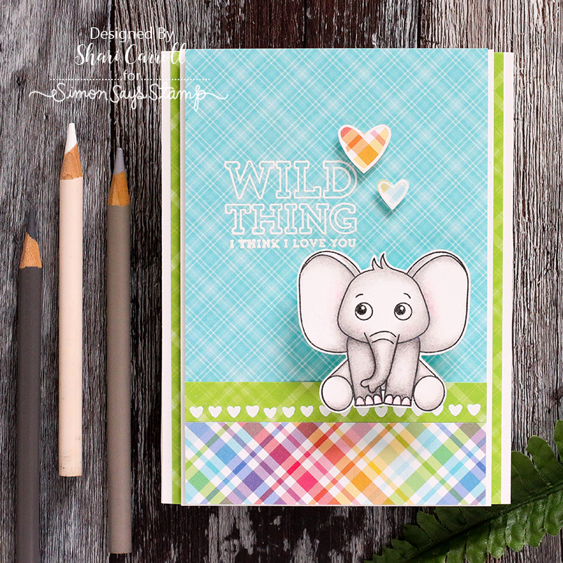 Shari Carroll, Wild and Colorful, Card Kit