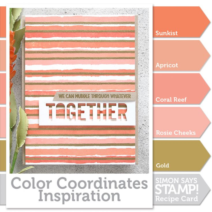 shari carroll, color coordinates