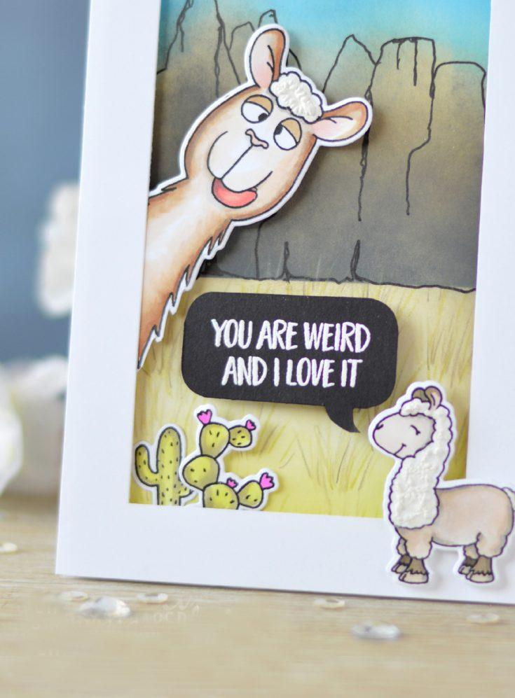 Gerda Steiner Designs: Llama Tell You!