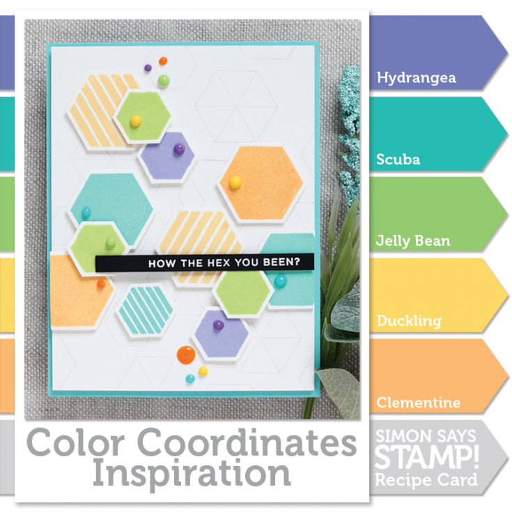 Shari Carroll, Color Coordinates