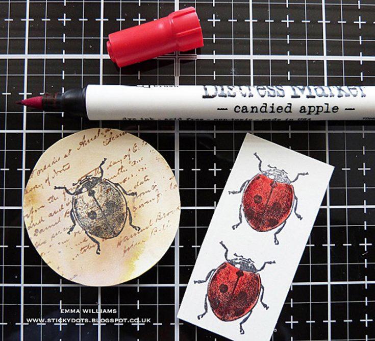 Entomology Frame by Emma Williams