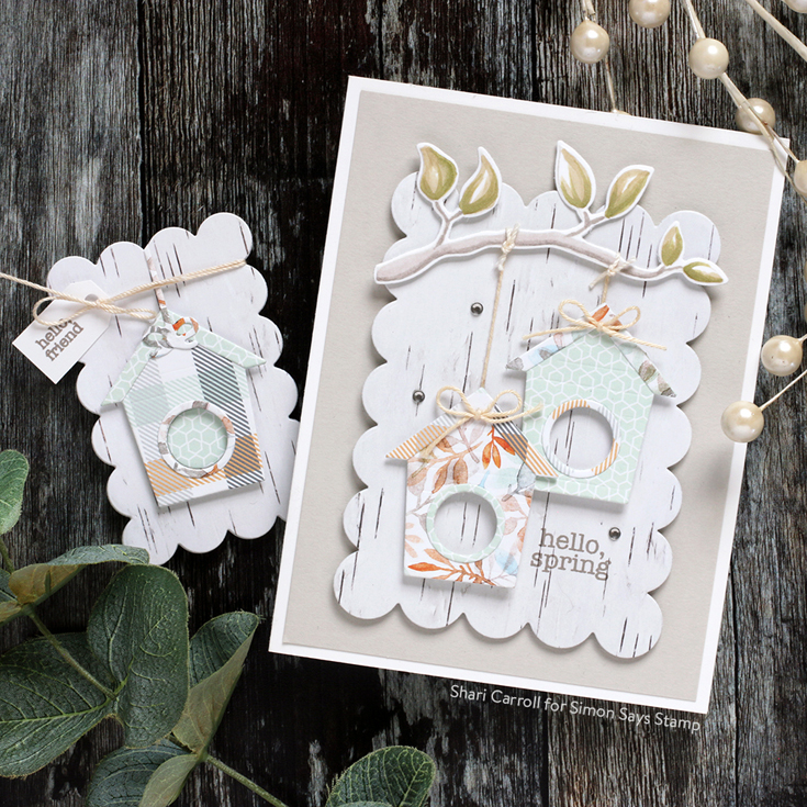 Hello Beautiful Blog Hop Shari Carroll Spring Birds stamp set and die, Chunky A2 Rectangles and Bitty Birdhouse dies